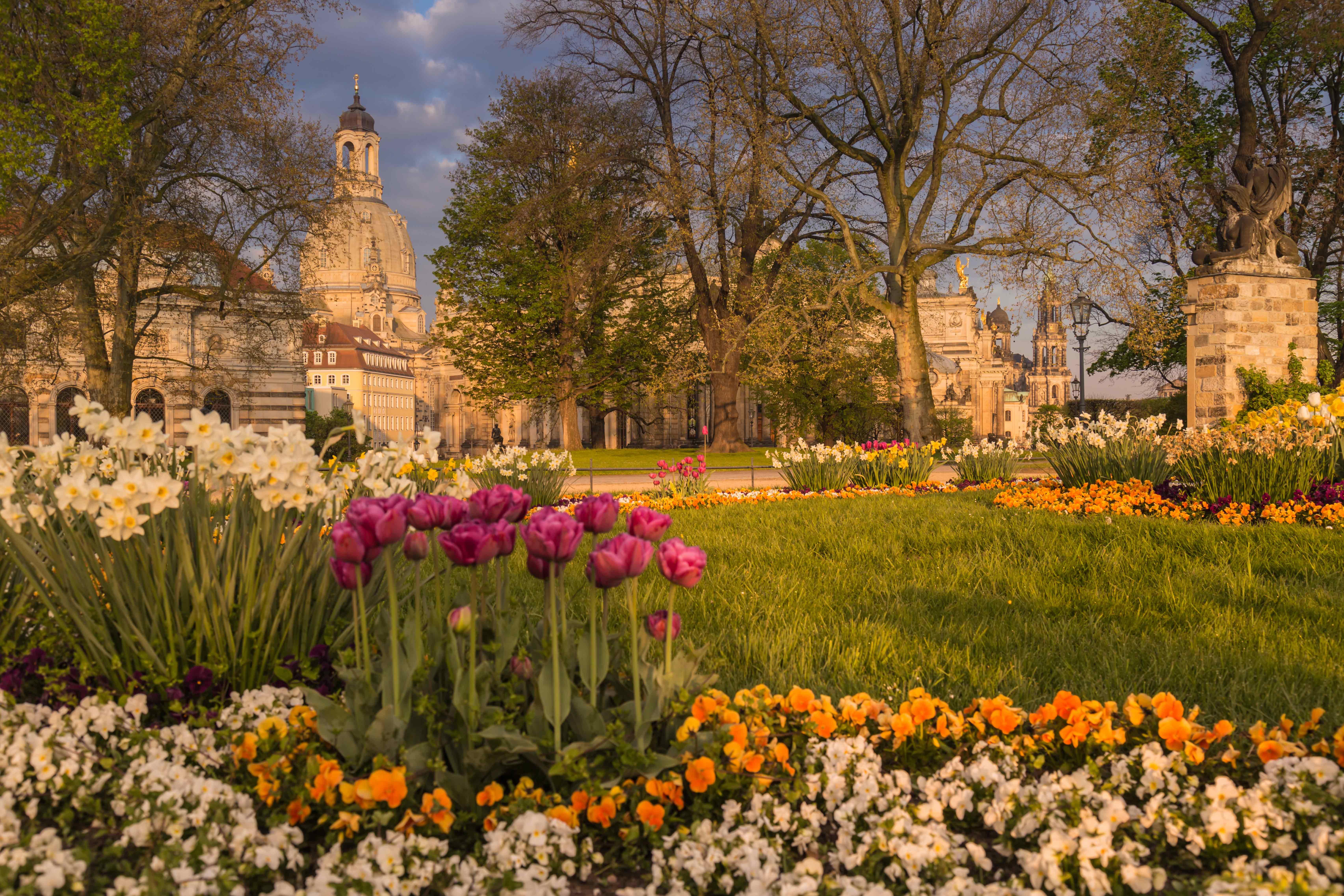 Brühlsche Terrasse im Frühling