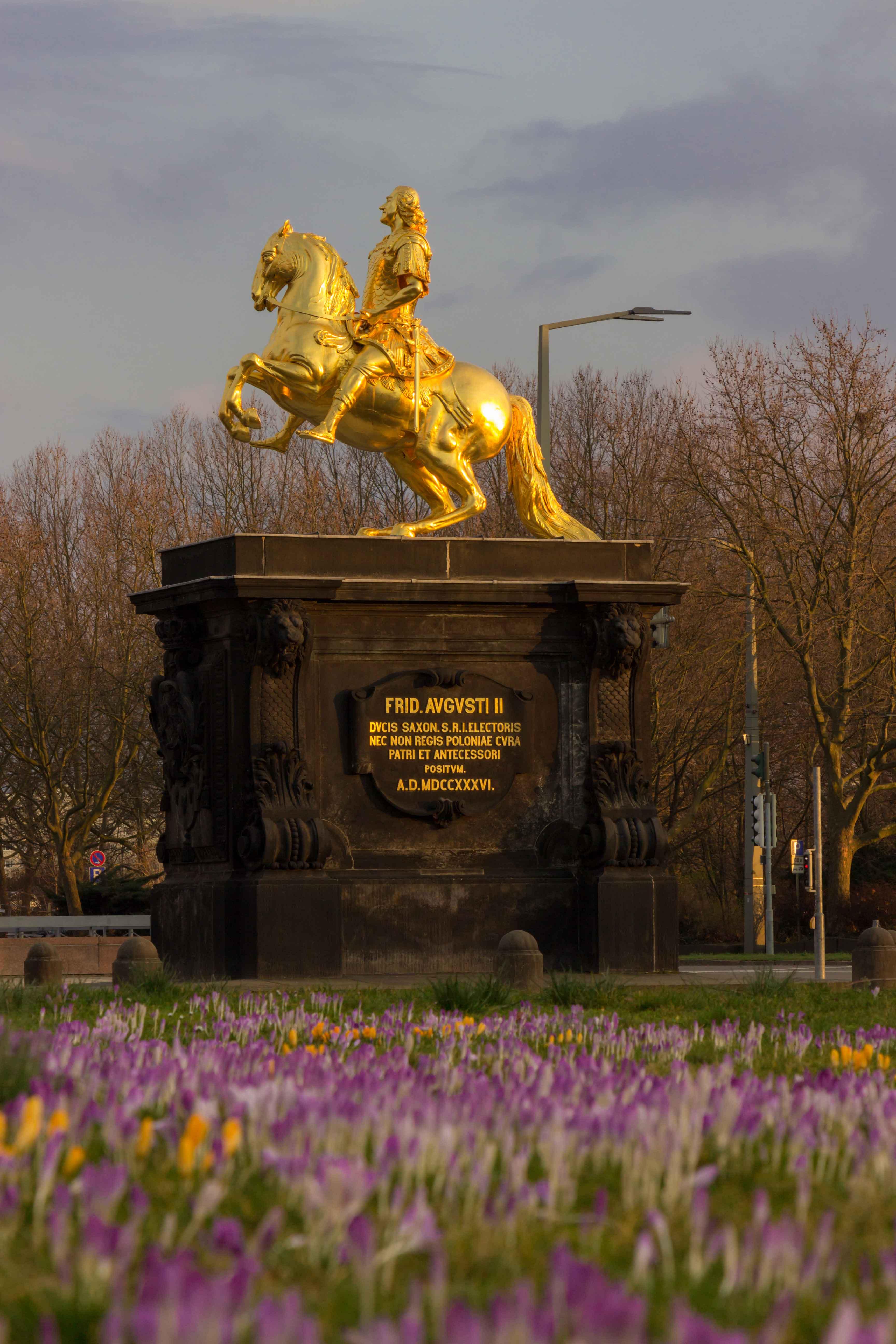 Goldener Reiter im Frühling