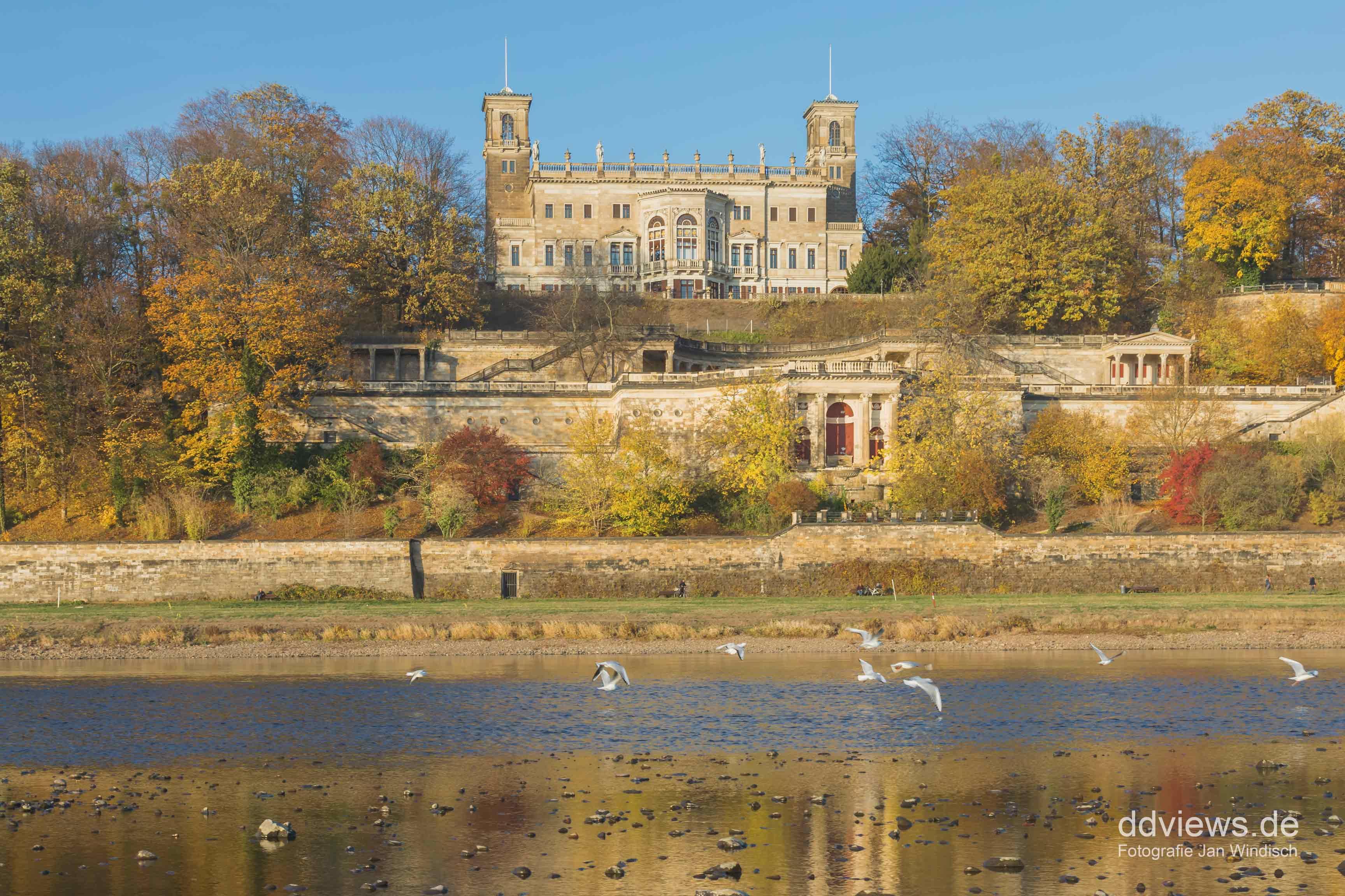 Schloss Albrechtsberg im Herbst